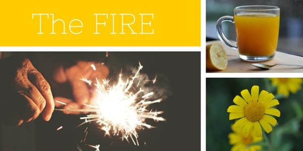 The FIRE Food & Spirit