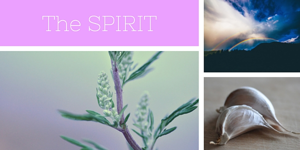 Food & Spirit