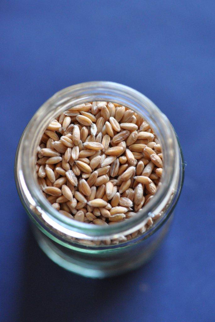 Detox spelt grains